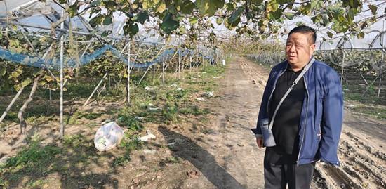 汝南县罗店镇大力发展农业经营主体