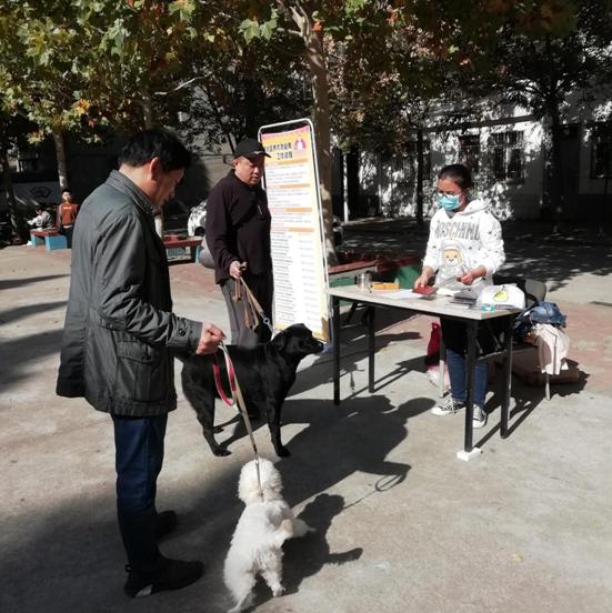 郑州市文化路街道办事处开展养犬办证年审义务进社区活动