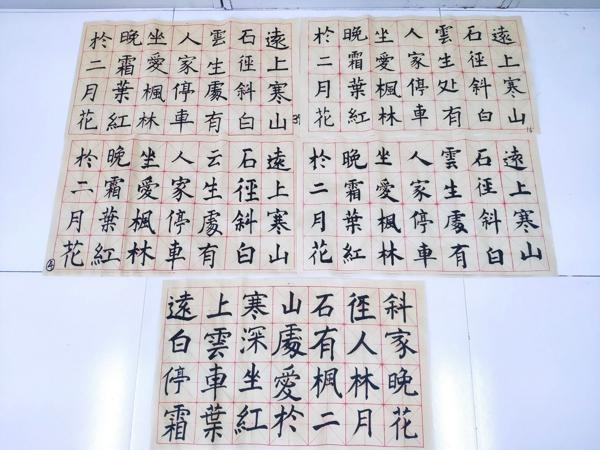 一笔一划写好字,一撇一捺浸书香 ――郑州高新区五龙口小学开展教师基本功成果展示活动