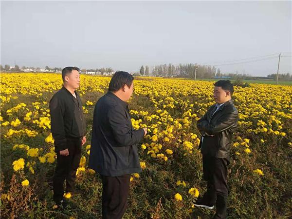 社旗县领导到兴隆镇督导扶贫项目和产业基地建设工作
