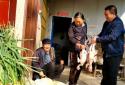 周口太康自然资源局扶贫干部:送鸡又送鱼,让贫困户温暖过冬