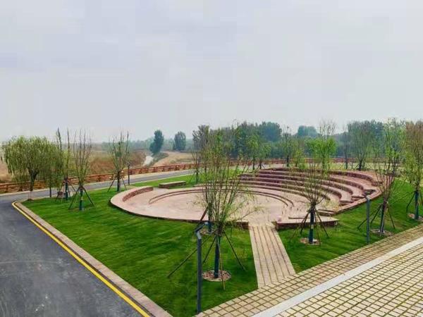 主流融媒体记者打卡郑州黄河滩地 你听,他们眼中的黄河有多美