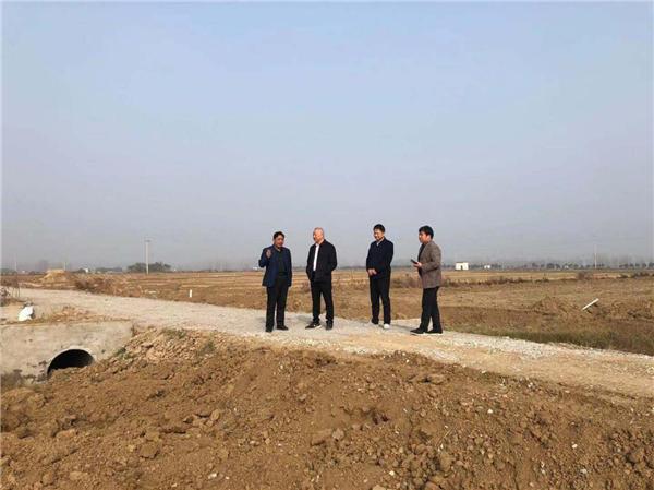 社旗县领导到饶良镇督导蔬菜基地建设