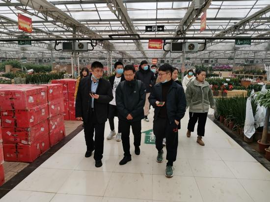保护生态如何实现高质量发展?郑州惠济区双桥花卉基地给出了答案