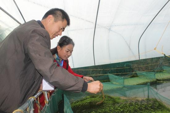 汝南县常兴镇人大代表周建林:我要带动群众共同致富