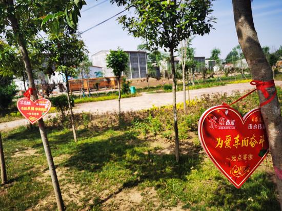 """""""幸福树""""激励致富 """"心愿树""""描绘未来——解码郏县东城街道王家庄社区居民的幸福"""