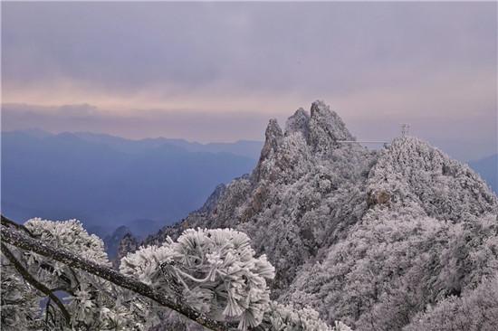 小雪节气,老界岭景区出现壮美雾凇奇观!