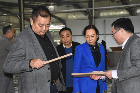 【商会动态】省工商联副主席周新萍莅临商会调研指导
