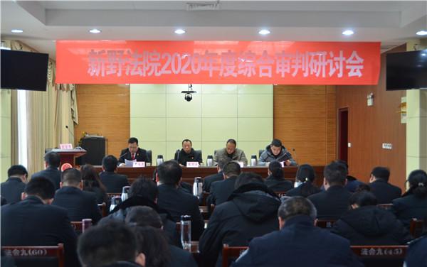 新野法院召开2020年综合审判研讨会