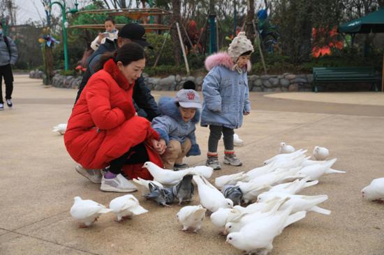 10组家庭游银基动物王国,见证四代同堂的欢乐
