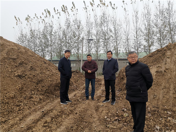 社旗县领导张荣印到李店镇满义蔬菜基地调研现场办公