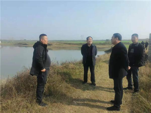 唐河县东王集乡:强力推进环境整治 建设美丽幸福家园