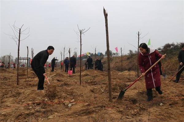 内乡:全民动员 义务植树