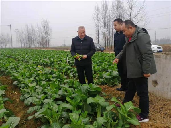 社旗县领导李贺峰深入基层督导扶贫产业发展