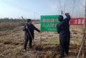 邓州市应急管理局开展森林防火隐患排查