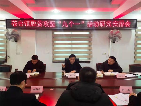 """唐河县苍台镇:深入开展""""九个一""""扶贫系列活动"""