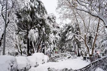 """""""菲洛梅娜""""来袭 西班牙暴风雪天气造成4人死亡"""