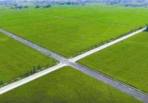 关注高标准农田建设:农田换新颜 稳产促增收
