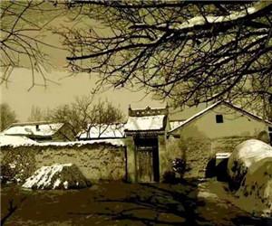 河南省人大代表贾艳梅:打造黄河非遗博物馆