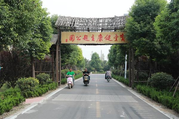 """许红兵代表:不搞""""盆景"""" 整体推进乡村振兴"""