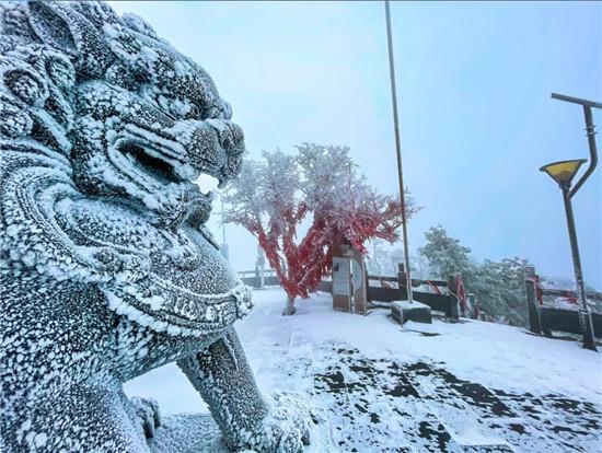 瑞雪兆丰年,2021年洛阳白云山首场降雪刷屏!