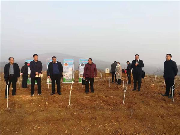 内乡县召开2021年造林绿化工作推进会