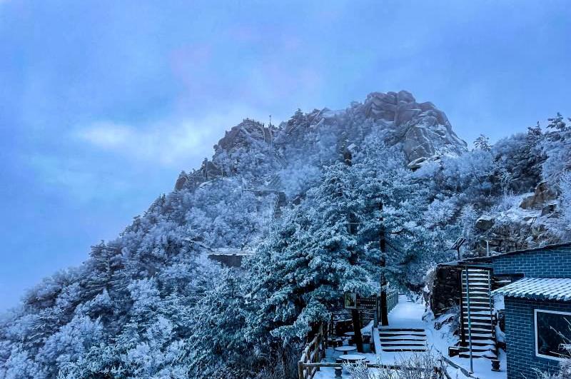 万树琼枝!白云山迎2021年首场降雪