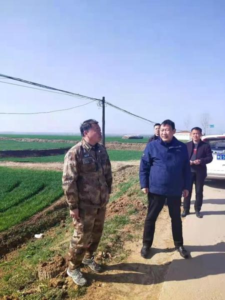 汝南县金铺镇打造农业精品工程助力乡村振兴