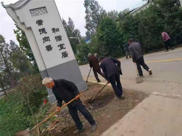 唐河县苍台镇:巩固脱贫成果 衔接乡村振兴