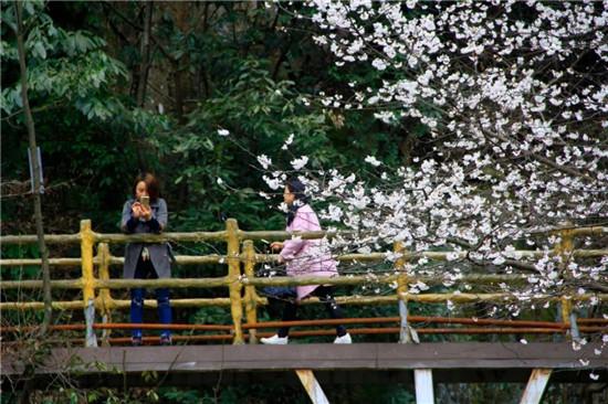 三八妇女节,龙津溪地实力宠粉,这份优惠福利请收下!