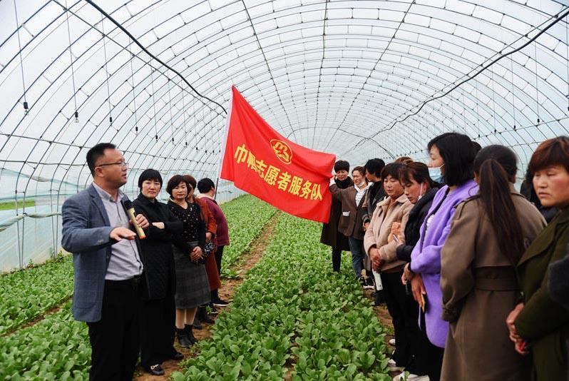 河南杞县:凝聚巾帼力量 助推乡村振兴