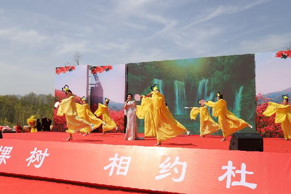第二届鲁山杜鹃花节开幕