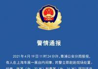 上海车展爬上车顶女子被行拘