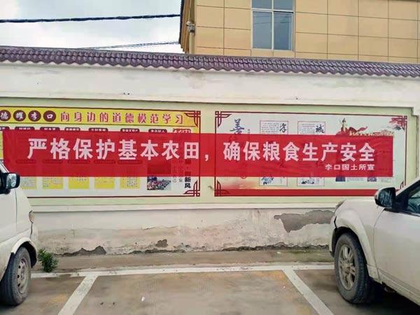 睢阳区李口镇:多措并举开展农村乱占耕地建房问题整治宣传活动