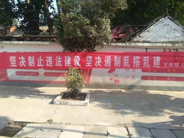 汝南县王岗镇多举措开展农村乱占耕地建房问题整治宣传活动
