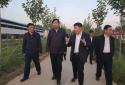 河南省农业农村厅副厅长王俊忠一行到豫东牧业调研山羊种业发展
