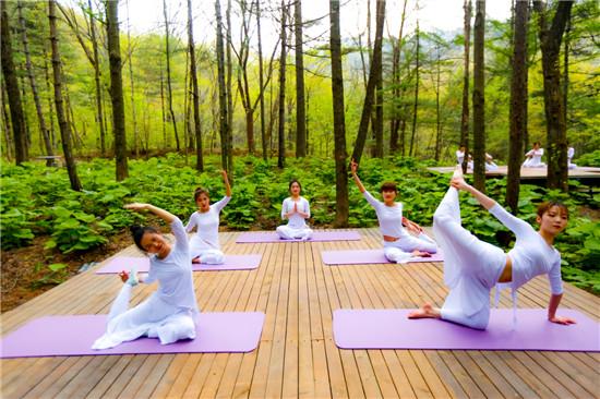 """自然好生态 健康""""森""""呼吸、森林瑜伽开启白云山的五一假期慢生活。"""