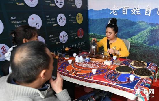 中国园林茶文化节在北京八大处开幕