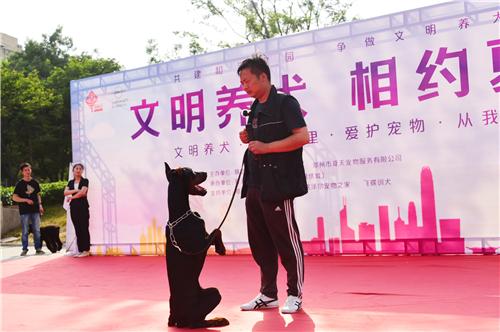 """""""文明养犬 相约夏天""""第二季公益活动在郑州举行"""