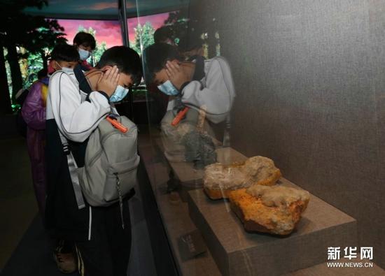 湖南张家界:博物馆里研学游