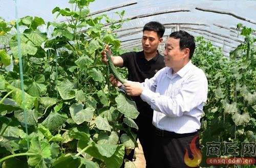 夏邑县农广校: 打造全国农民教育的夏邑模式