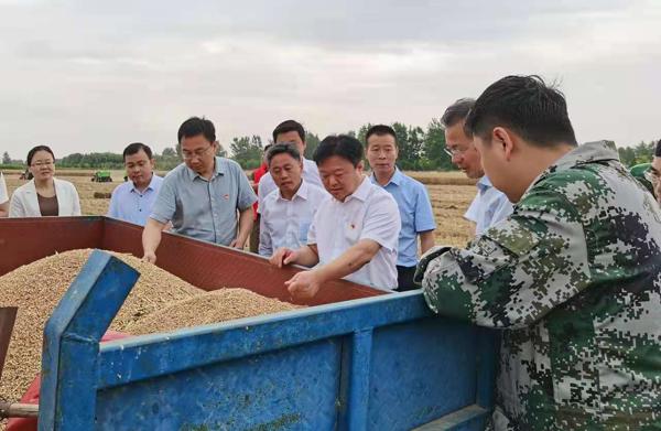 河南省副省长、驻马店市委书记陈星到水屯镇调研麦收情况