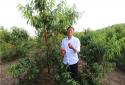 耕耘在希望的田野上——记桐柏县城郊乡北杨庄村致富带头人汪桂田
