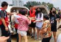 助力防汛救灾 郑州浩创农业科技有限公司党支部在行动
