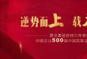 建业集团连续三年荣膺中国企业500强和中国民营企业500强!