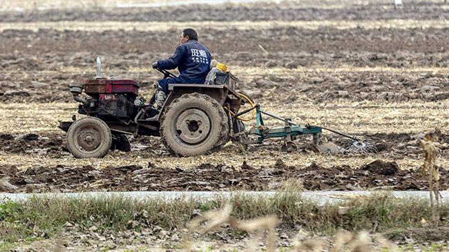 安阳滑县:整理土地 准备播种冬小麦