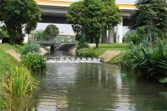 宝丰:强化依法治水 维护河湖健康