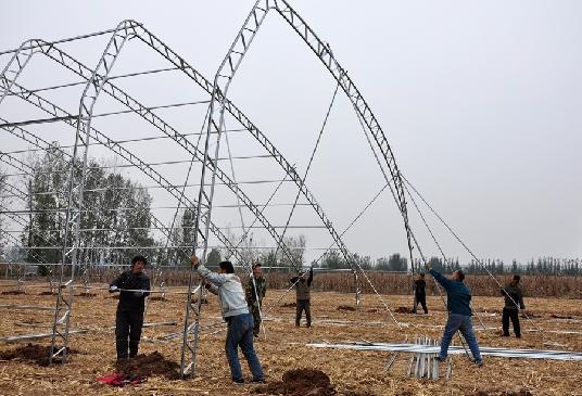 """焦作沁阳:""""设施农业""""助力乡村振兴"""